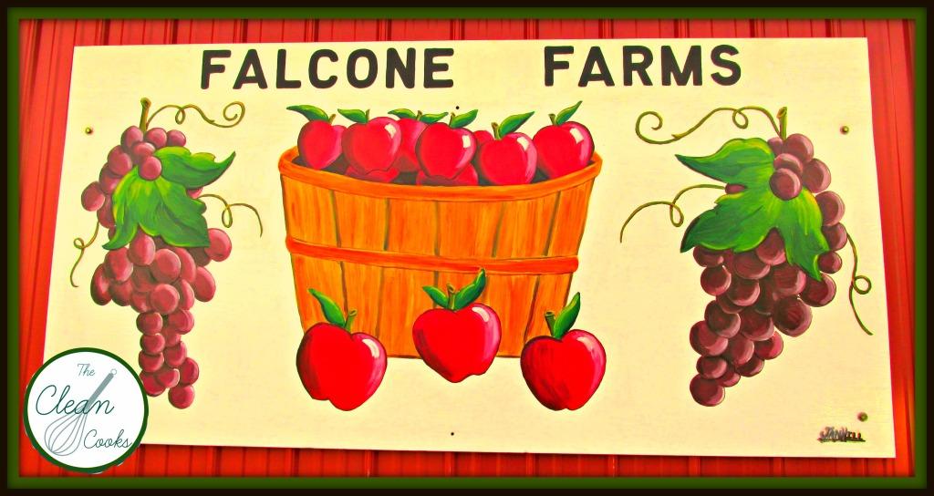 Falcone farms