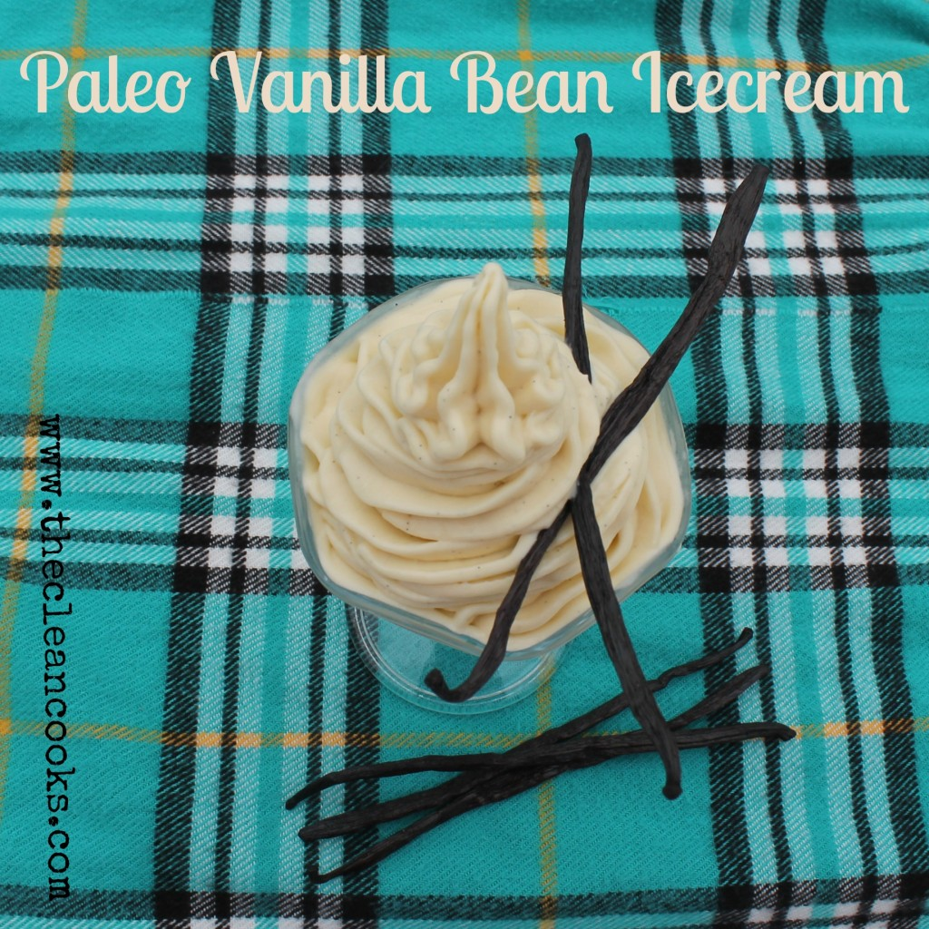 Vanilla Bean Icecream 2