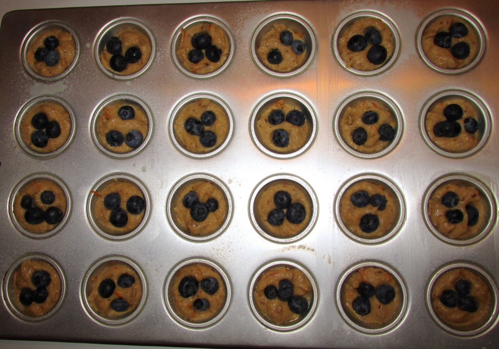 Paleo Blueberry mini muffins