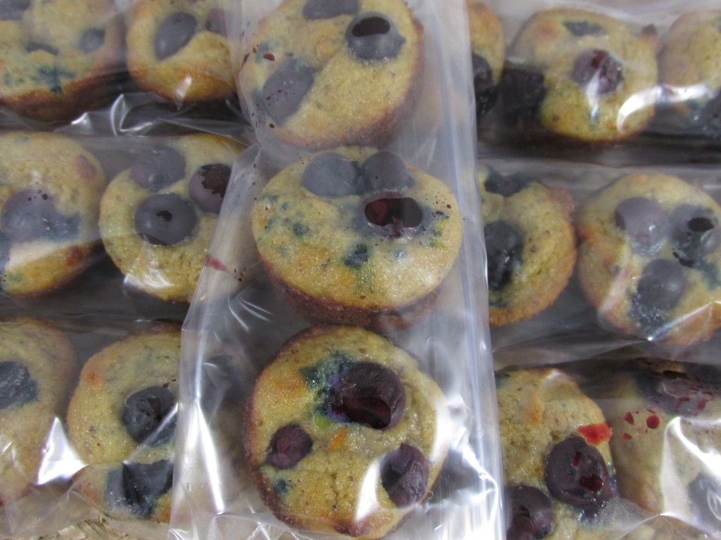 Paleo Blueberry Muffin Meal Prep