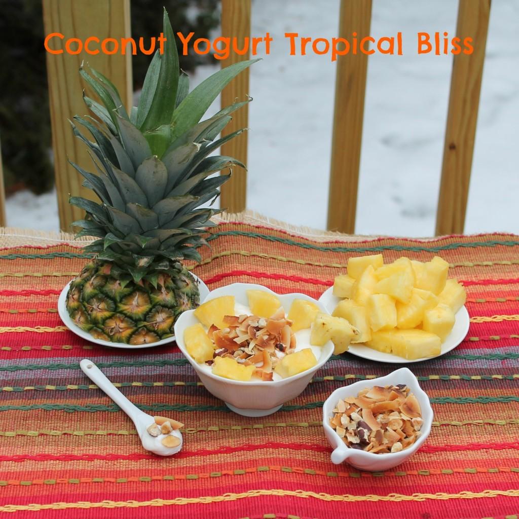Coconut Yogurt Tropical Bliss